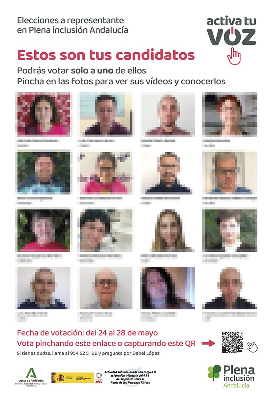 Diseño de línea gráfica. Elecciones. Plena inclusión Andalucía